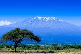 Mount Kilimanjaro Image